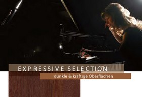 EXPRESIVE SELECTION